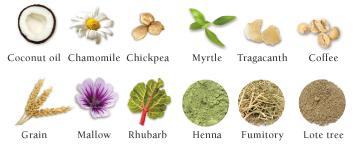 12種の無農薬ハーブ